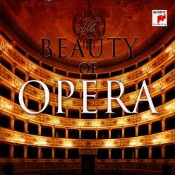 The Beauty of Opera [ 2 CD ]